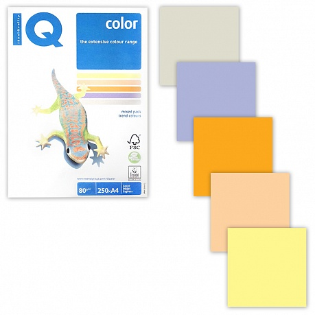 Бумага IQ color А4 80гр/м 250л 5цв Trend Mixed Packs RB03